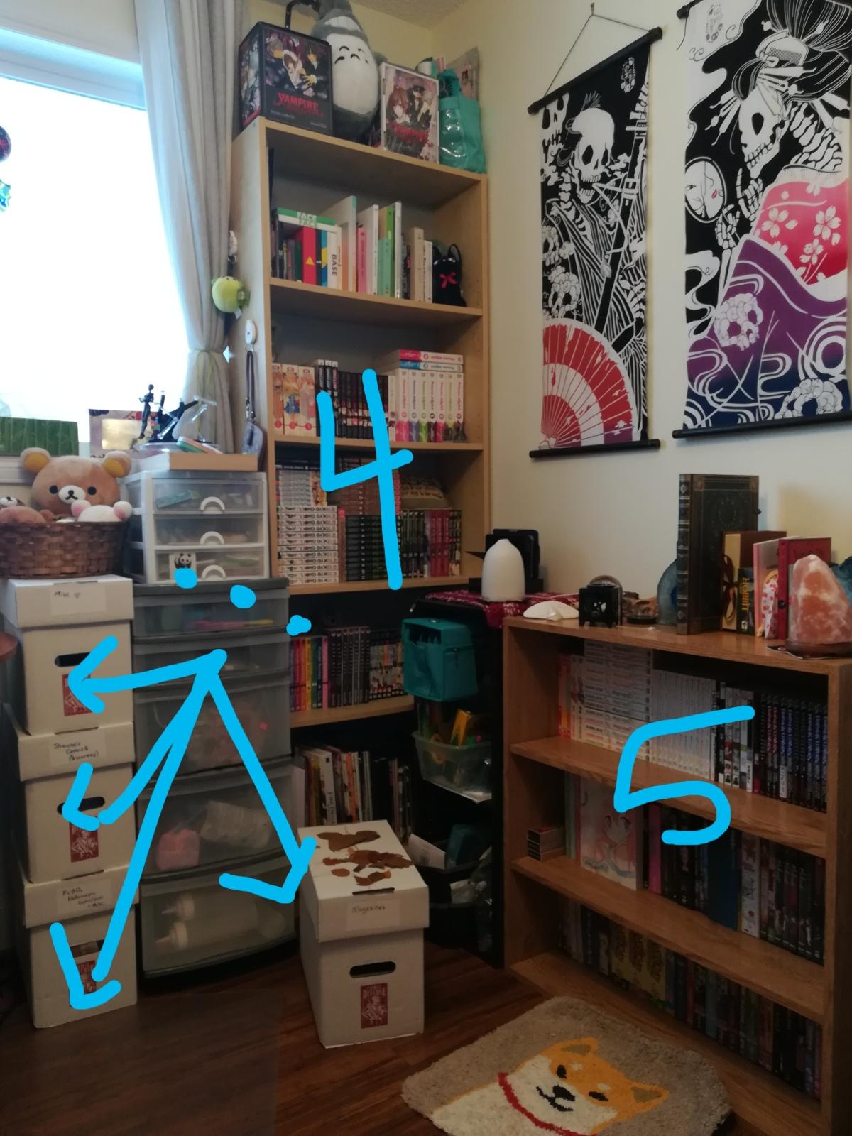 Letting Go: On KonMari &Books