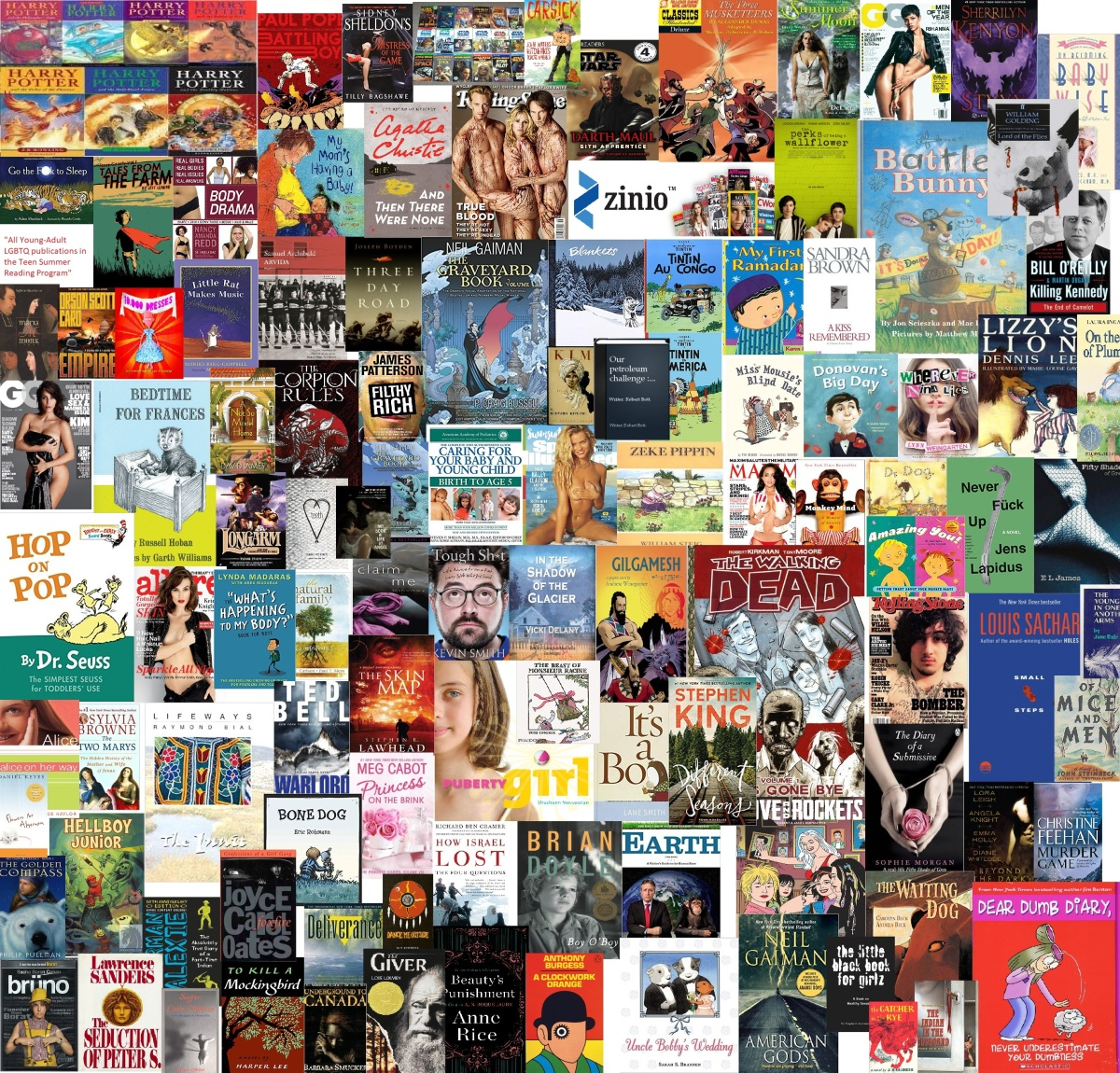 I READ BANNED BOOKS- Freedom To Read WeekPicks